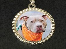 """Dog Pit Bull Grey Charm Tibetan Silver with 18"""" Necklace BIN D"""