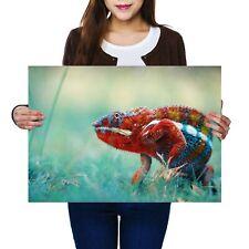 Animal Poster 3346 Poster Print Art A0 A1 A2 A3 A4 CHAMELEON FOREST LIZARD