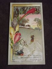 VTG VICTORIAN TRADE CARD: D. M. READ CO. DRY GOODS & CARPETS,  BRIDGEPORT CONN