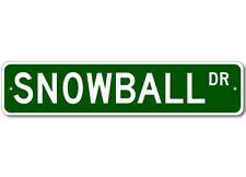 Custom Last Name Drive Street Sign SNOWBALL Personalized Aluminum Metal Plaque