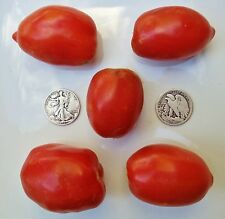 Amish Paste - Organic Heirloom Tomato Seeds - Paste/Slicer - Awesome - 40 Seeds