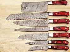 CUSTOM MADE DAMASCUS BLADE 7Pcs. CHEF/KITCHEN KNIVES SET D-T-081-7C