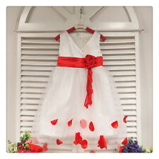 Flower Girl Pageant Wedding Dance Party Petal Dress