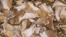 Axis Deer Hide Scraps Leather Crafts Hair Fly Tying Brushes Jewelry 16oz.