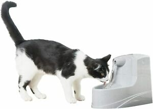 PetSafe Drinkwell Mini Pet Fountain for Cats and Small Dogs – Filtered Water