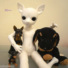 Mimi Collection x Hujoo 28cm Dog Bjd Figure Nude Body - Albu Min Pin Doll White