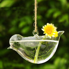 Clear Bird Glass Vase Bottle Hydroponic Planter Pot Table Garden Decor