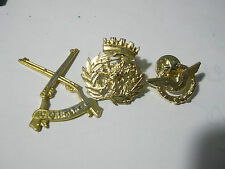 LOT PINS Irish Army- Reserve Defence Forces + OTHER  (10)