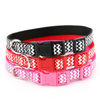 Zig Zag Dog Collar and Matching Lead Set - Puppy and Dog