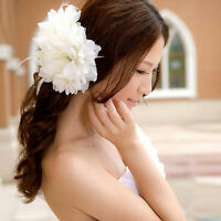 Orchid Bridal Flower Hair Clip Brooch Headpiece Pin Beach Wedding Barrette WK