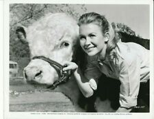 JULIET MILLS & Cow Original CANDID Universal Studio Set Vintage RARE BREED Photo