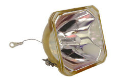 SONY PROJECTOR LAMP LMP-H130 VPL-HS50 VPL-HS51A LMPH130