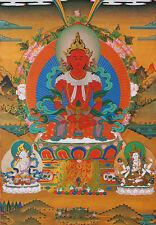 "14"" SILK BROCADED WOOD SCROLL THANGKA: AMITABHA BUDDHA THREE LORDS OF LONGEVITY"