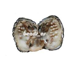 20PCS Akoya Pearl Oysters With Oval 5-7mm Wish Pearl Freshwater Pearl Beads Gift