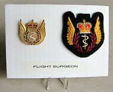 Air Force Flight Surgeon Officer Full Size Metal & Cloth Badge Set Wings Lot