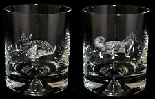 MAINE COON *CAT GIFT*  Boxed PAIR GLASS WHISKY TUMBLER