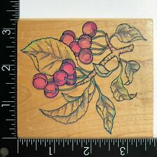 Rubber Stampede Cherry Cherries Branch Leaves Stem Wood Mounted Rubber Stamp