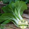 800+ Pak Choi (Chinese Cabbage Bok Choy) Seeds USA Non-GMO | Fresh Garden Seeds