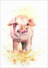 HELEN ROSE Limited Print of my PIG animal art watercolour 163