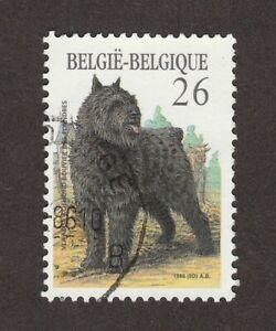 BOUVIER DES FLANDRES ** Int'l Dog Postage Stamp Art ** Great Gift Idea **
