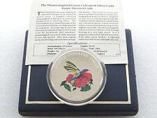 1995 Turks Caicos Purple Throated Carib 25 Crowns Silver Proof 5oz Coin Box Coa