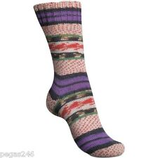 Regia Sock yarn Arne & Carlos 3, 75% wool 25% polyamide, 100g/459yd #2459