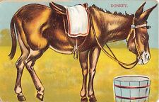 Donkey Cut Out Stand Up The Star Series G. D. & D. London Animal Postcard