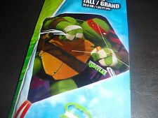 kite Ninja Turtle Tmnt Raphael Tall 22 inch New kids kite