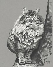 Original art work Ink drawing Cat in the tree on toned gray paper, animal 8X10''