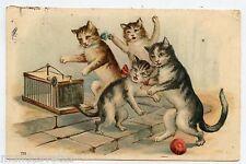 le piège à CHATS  Cats . Gato . Katze . 猫. Gaufré. Embossed