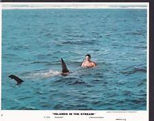 David Hemmings Islands in the Stream 1977 original movie photo 29441