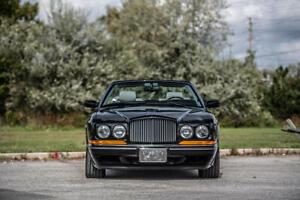 Bentley Azure Grille Vanes  UB87042 + UB87043 Used  1995 - 1997 - Flawless N.L.A