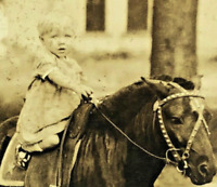 """Circa 1890s Vintage Cabinet Card Photo 6"""" x 4"""" Small Child Riding Pony Horse"""