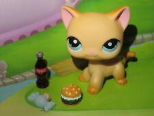 "Pet shop Chat Chaton Europeen * Petshop Kitty Cat # 339 "" NEUF "" + Accessoires"