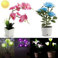Solar Power Rose Lily Flower Garden Stake Landscape Lamp Yard Lawn Outdoor LED
