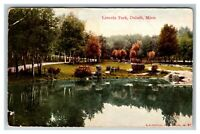 Vintage View of Lincoln Park, Duluth MN c1910 Postcard L28