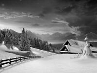 Black And White Winter Snow Landscape Wall Art Large Poster & Canvas Pictures