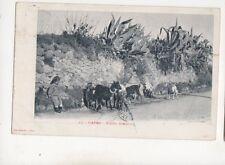 Capri Studio Artistico Italy 1904 U/B Postcard 432b