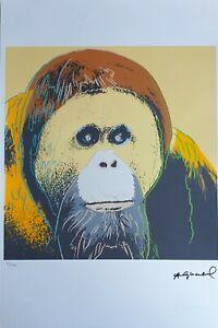 Andy Warhol Litografia 57 x 38 Arches Timbro Secco Israel Castelli AN172