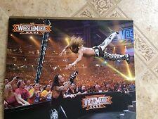 WWE Wrestlemania 25 John Cena / XXVI Undertaker vs HBK 2 Sided Poster 11x14
