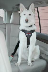 Clix Car Safe Dog Seat Belt Harness Safety Padded Travel Clip - SIZE LARGE