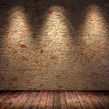 10X10FT Brick Wall Floor Backdrop Photography Photo Studio prop Background RT07