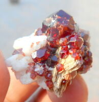 63 CT Beautiful Garnet Crystals Bunch With Muscovite & Albite Combine @ Skardu