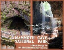 KY - MAMMOTH CAVE NAT'L PARK - Travel Souvenir Flexible Fridge Magnet