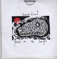 (BZ675) Sweet Bread, Ghosts On The Bonfire EP - 2008 DJ CD