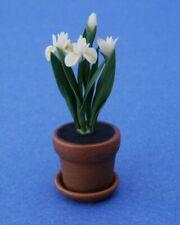 Miniature Dollhouse White Iris Plants Flowers New