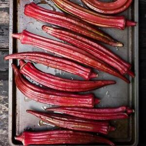 100 Red Burgundy  Okra Seeds Non-GMO Heirloom   USA Seller