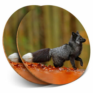 2 x Coasters - Wild Black Silver Fox Animal Home Gift #21243