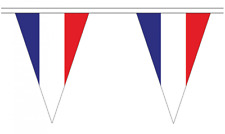 France 5M Triangle Flag Bunting - 12 Flags - Triangular