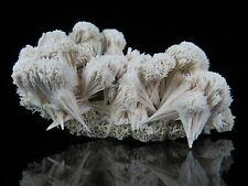 Fine KUTNOHORITE crystals * Broken Hill * Australia * Ex. Milton Lavers Coll